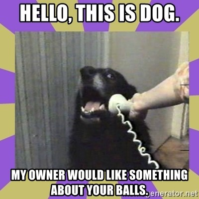 Yes, this is dog! - hello, this is dog. my owner would like something about your balls.