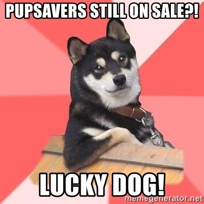Cool Dog - PupSavers Still On Sale?! Lucky Dog!