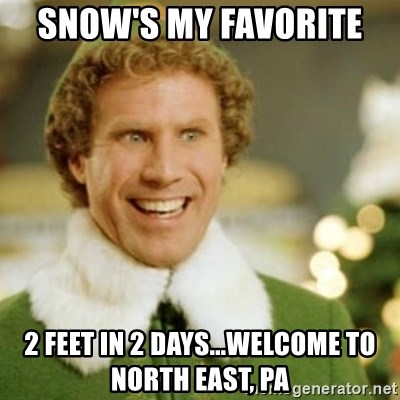 Buddy the Elf - Snow's my favorite  2 feet in 2 days...welcome to North East, PA