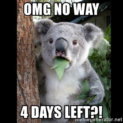 Koala can't believe it - OMG NO WAY 4 DAYS LEFT?!