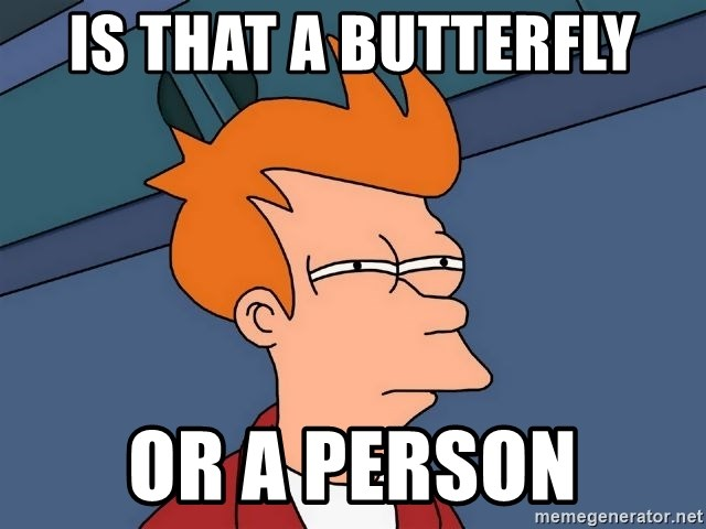 Futurama Fry - Is that a butterfly or a person