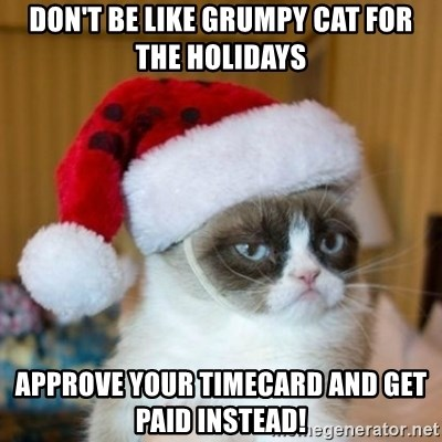 Grumpy Cat Santa Hat - Don't be like grumpy cat for the holidays Approve your timecard and get paid instead!