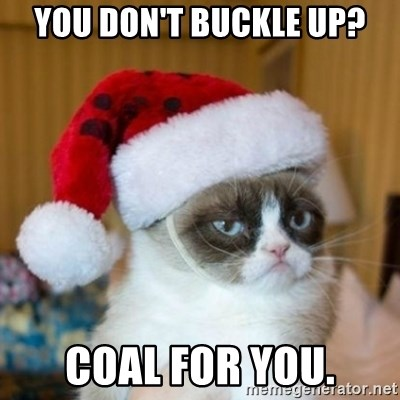 Grumpy Cat Santa Hat - You don't buckle up? Coal for you.