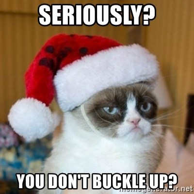 Grumpy Cat Santa Hat - Seriously? You don't buckle up?