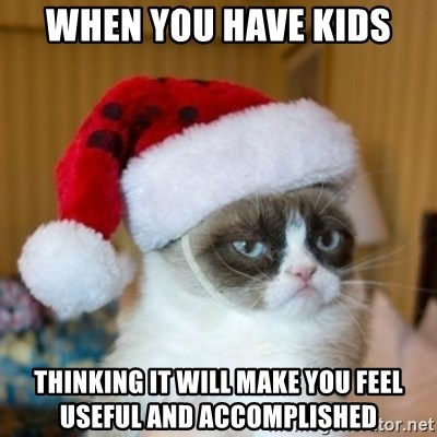 Grumpy Cat Santa Hat - when you have kids thinking it will make you feel useful and accomplished