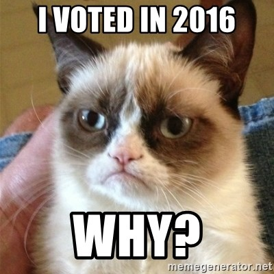 Grumpy Cat  - i voted in 2016 why?
