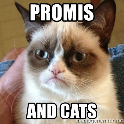 Grumpy Cat  - PROMIS and CATS