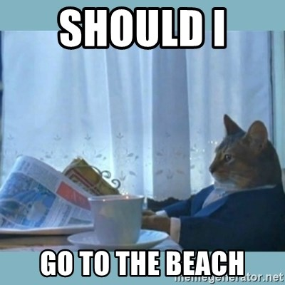 rich cat  - Should I  Go To The Beach