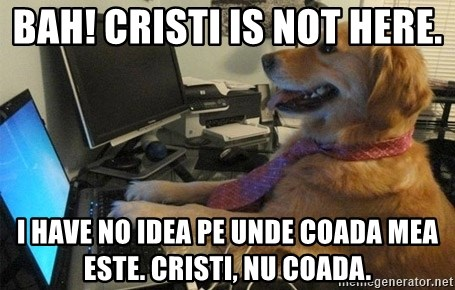 I have no idea what I'm doing - Dog with Tie - Bah! Cristi is not here.  I have no idea pe unde coada mea este. Cristi, nu coada.