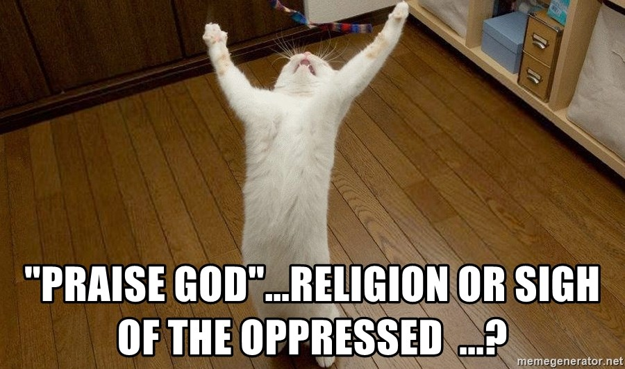 "praise the lord cat - ""Praise God""...Religion or Sigh of the oppressed  ...?"