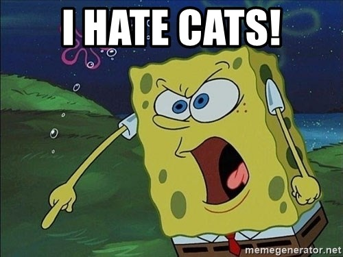 Spongebob Rage - I Hate Cats!