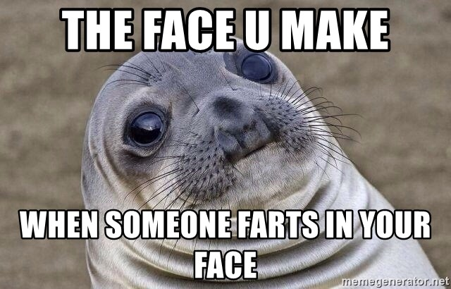 Awkward Seal - the face u make when someone farts in your face