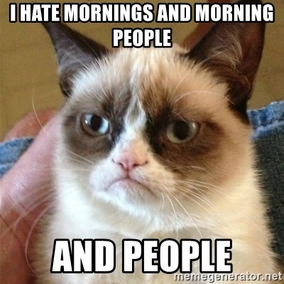 Grumpy Cat  - I hate mornings and morning people  And people