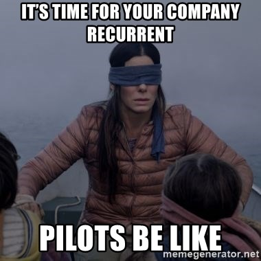 Bird.Box.Sandra.Bullock. - It's time for your company recurrent Pilots be like