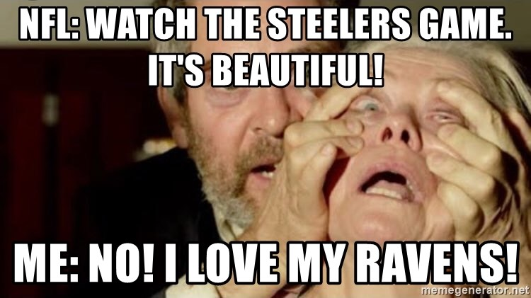 Birdbox open - NFL: Watch the steelers game. It's beautiful!  Me: No! I Love my Ravens!