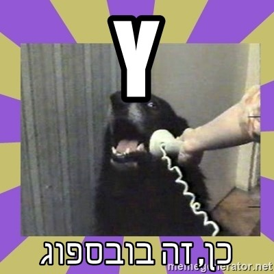 Yes, this is dog! - Y כן, זה בובספוג