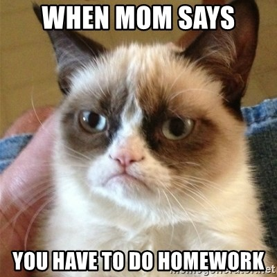 Grumpy Cat  - When mom says  You have to do homework