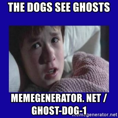 Sexto Sentido - The dogs see ghosts   memegenerator. net / ghost-dog-1