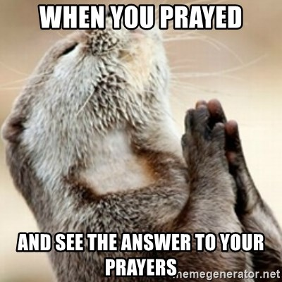 Praying Otter - When you prayed And see the answer to your prayers