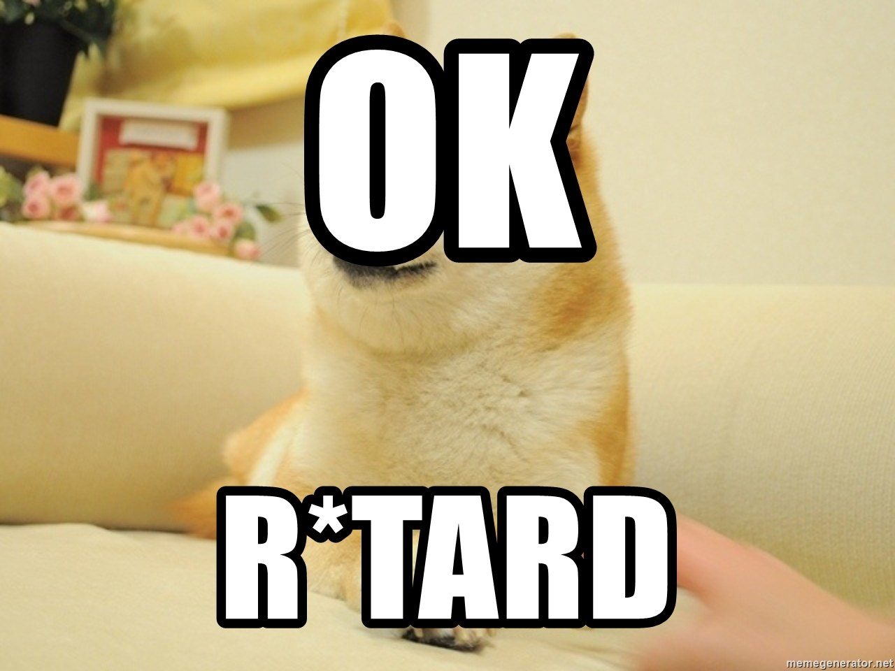 so doge - ok r*tard