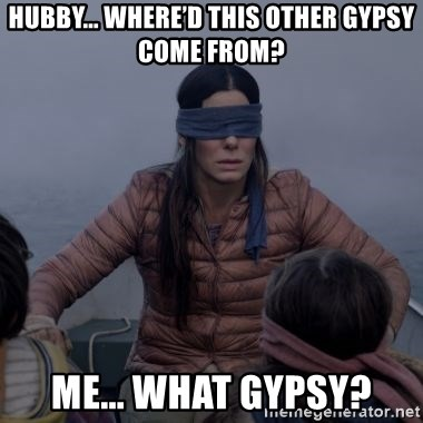Bird.Box.Sandra.Bullock. - HUBBY... WHERE'D THIS OTHER GYPSY COME FROM? ME... WHAT GYPSY?