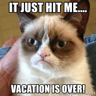 Grumpy Cat  - It just hit me....  Vacation is Over!