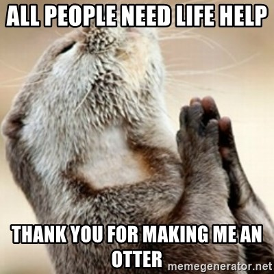 Praying Otter - all People need life help  Thank you for making me an otter