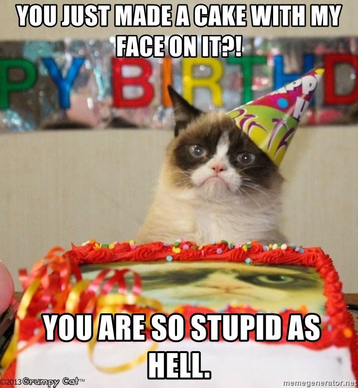 Grumpy Cat Birthday hat - You just made a cake with my face on it?!  you are so stupid as hell.