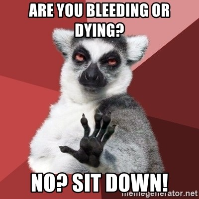 Chill Out Lemur - ARE YOU BLEEDING OR DYING? NO? SIT DOWN!