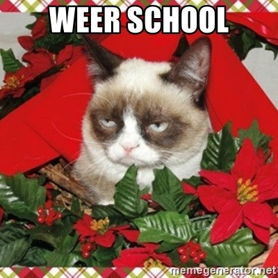 Grumpy Christmas Cat - weer school