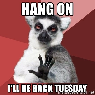 Chill Out Lemur - Hang on I'll be back Tuesday