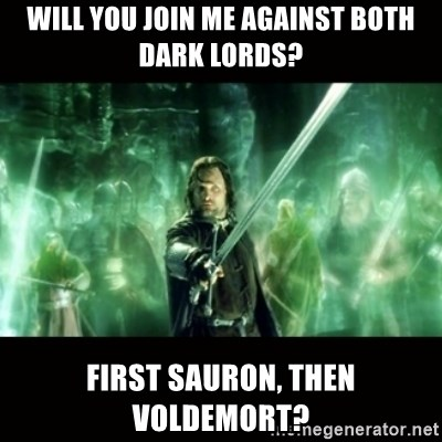 Aragorn What Say You - will you join me against both dark lords? first sauron, then voldemort?