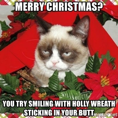 Grumpy Christmas Cat - Merry Christmas? you try smiling with holly wreath sticking in your butt