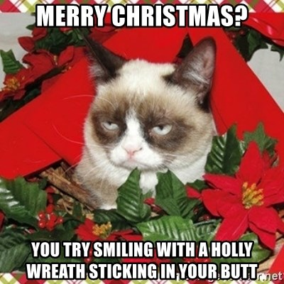 Grumpy Christmas Cat - Merry Christmas? You try smiling with a holly wreath sticking in your butt
