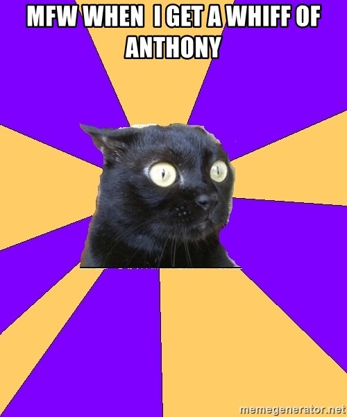 Anxiety Cat - mfw when  i get a whiff of anthony