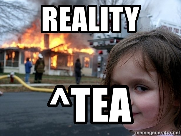 Disaster Girl - Reality ^tea