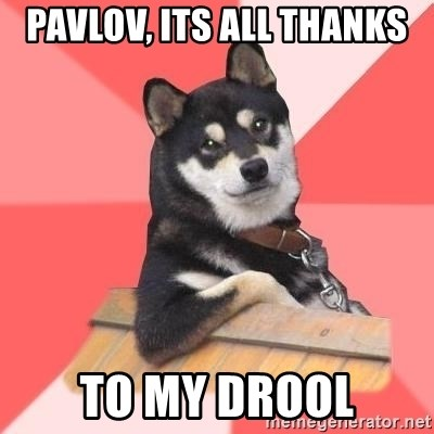 Cool Dog - PAVLOV, ITS ALL THANKS TO MY DROOL