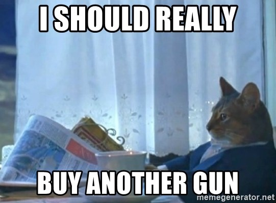 newspaper cat realization - I SHOULD REALLY BUY ANOTHER GUN
