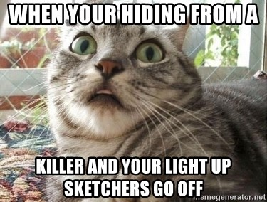 scared cat - when your hiding from a  killer and your light up sketchers go off