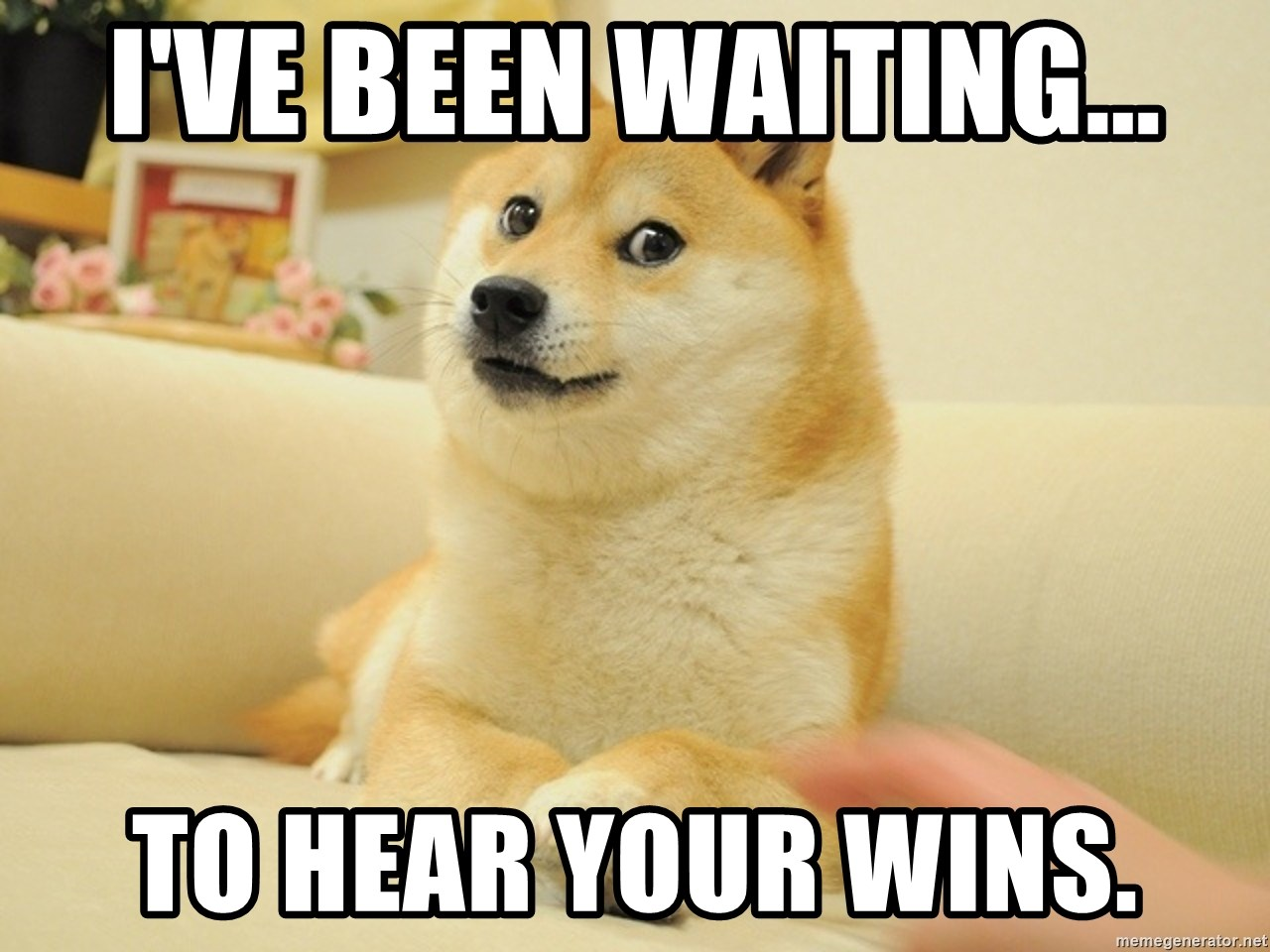 so doge - I've been waiting... To hear your wins.