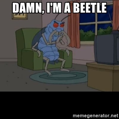 Family Guy Beetle - Damn, i'm a beetle