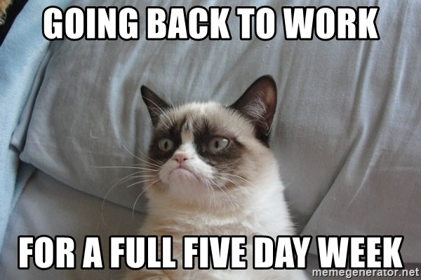 Grumpy cat good - GOING BACK TO WORK FOR A FULL FIVE DAY WEEK