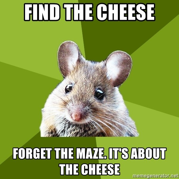 Prospective Museum Professional Mouse - find the cheese forget the maze. it's about the cheese