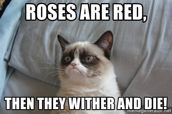 Grumpy cat good - roses are red, then they wither and die!
