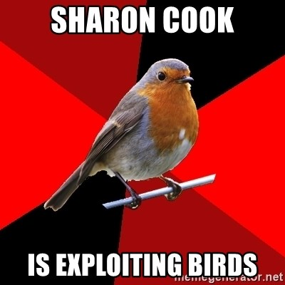 Retail Robin - sharon cook is exploiting birds
