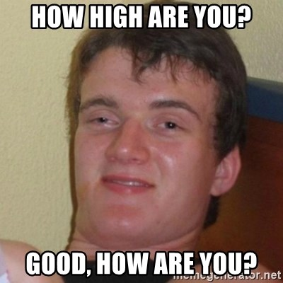 Really Stoned Guy - How high are you? Good, how are you?