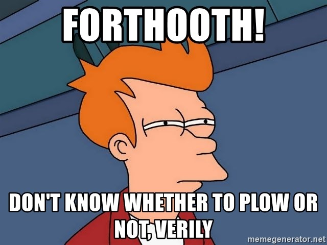 Futurama Fry - Forthooth! don't know whether to plow or not, verily