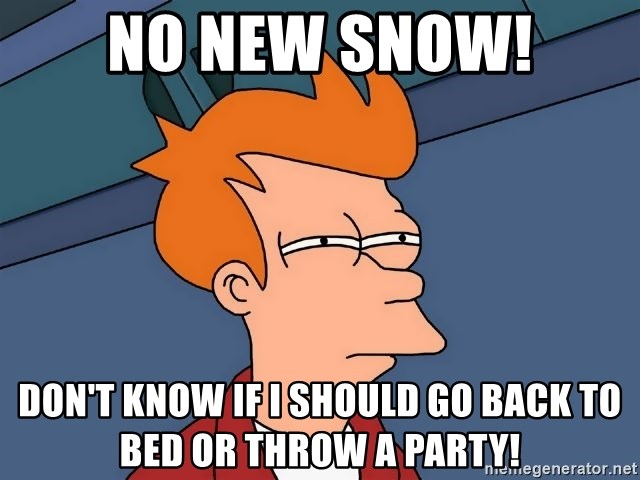 Futurama Fry - No new snow! Don't know if I should go back to bed or throw a party!