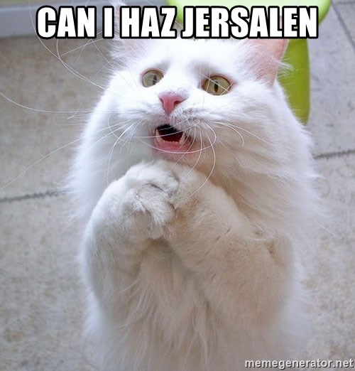 i can haz cat - can i haz jersalen
