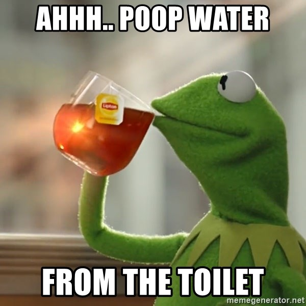 Kermit The Frog Drinking Tea - ahhh.. poop water from the toilet